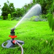 В какое время года лучше сажать газон