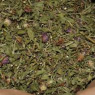 Что такое василек луговой: украшение сада или лекарственное растение