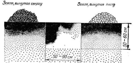Схема подготовки посадочной ямы для яблони фото