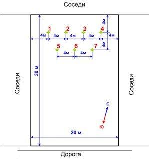 Схема размещения насаждений на участке фото