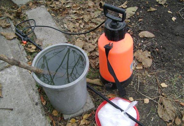 Подготовка к опрыскиванию персика фото