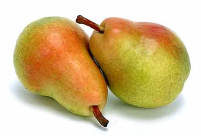 Плоды груши сорта Сказочная фото