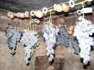 Подвешивание гроздей на веревку фото