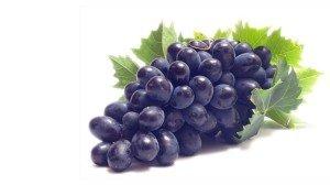 Виноград Изабелла спелая гроздь фото