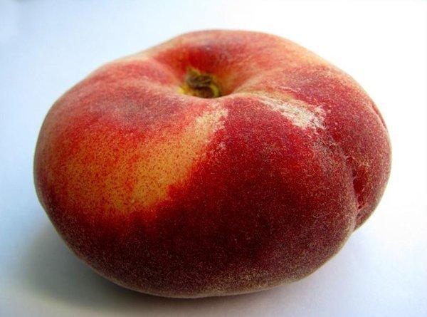 Инжирный персик фото