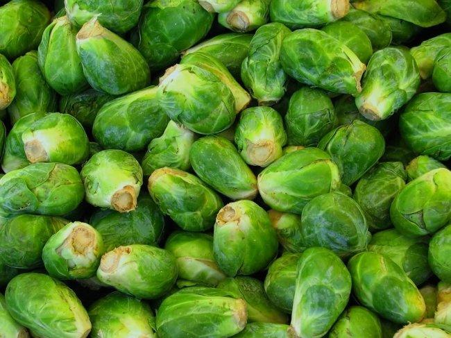 Урожай брюссельской капусты при правильном уходе