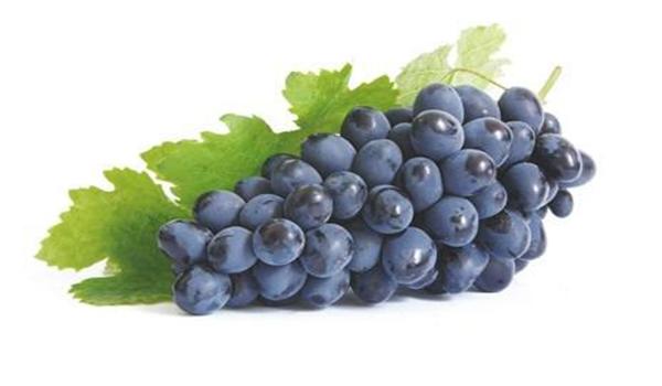 гроно винограда