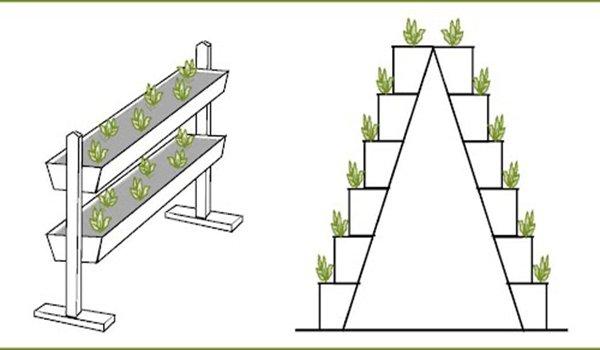 примеры устройств для вертикального выращивания клубники