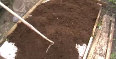 грядка с почвой