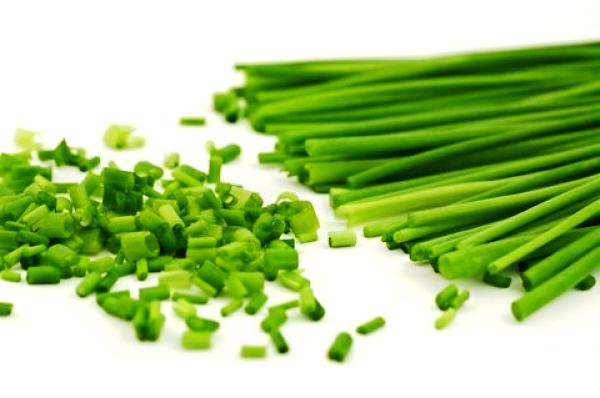 Как садить лук в теплице на зелень