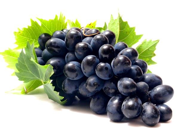 Лучшие сорта темного винограда