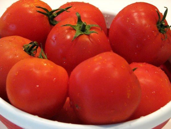 помидоры Санька фото