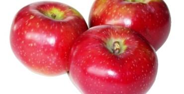 Яблоки Лобо фото плодов