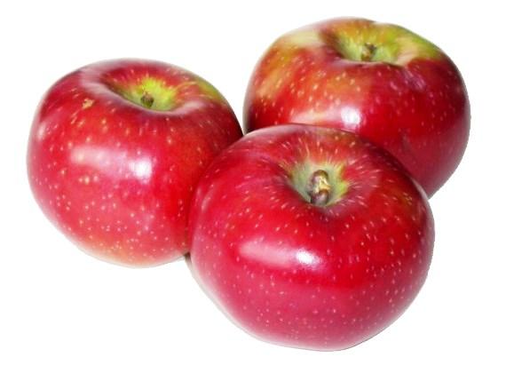лобо яблоки фото