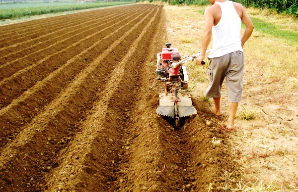 Как садить картошку мотоблоком