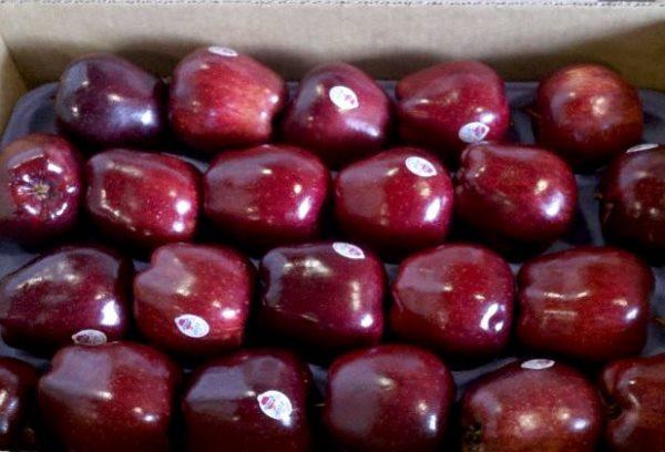 Зимние яблоки Ред Делишес