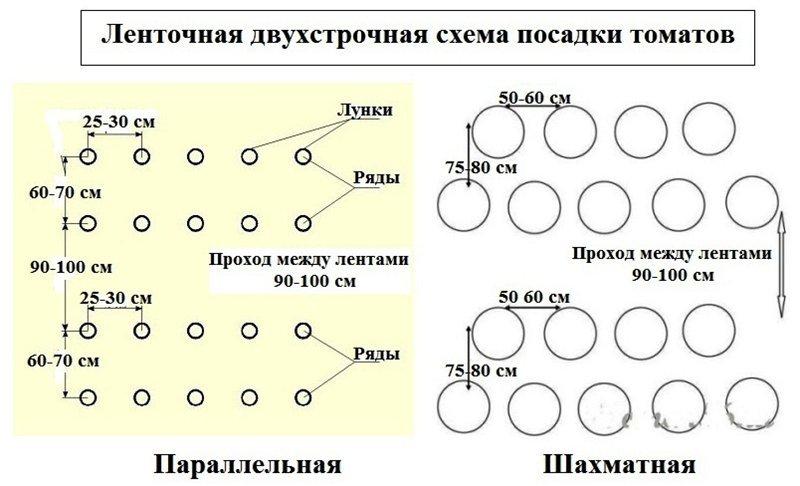 Схема ленточно-двухстрочной посадки