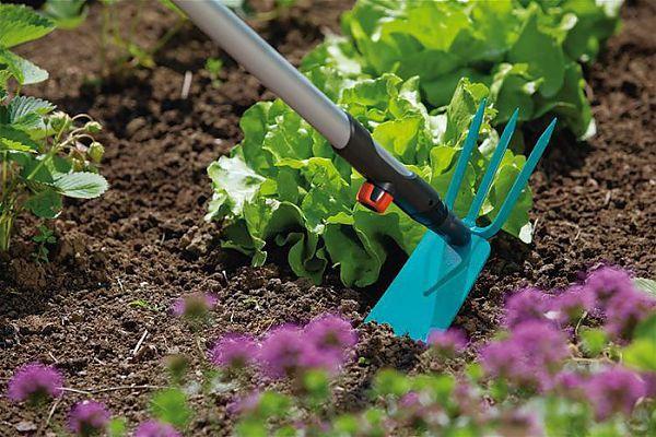 Садовый инструмент для обкапывания клубники