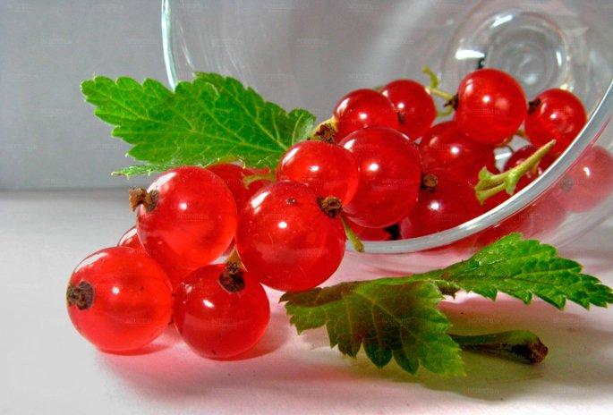 Натюрморт из красных ягод