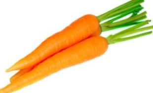 Морковь спелая на фото