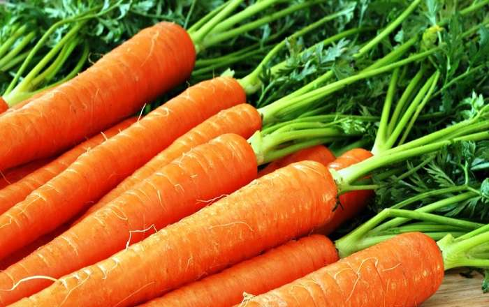 Несколько способов как хранить морковь