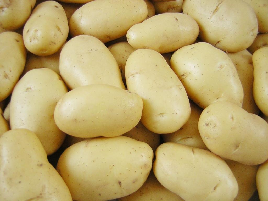 Преимущества популярного сорта картофеля Тулеевский