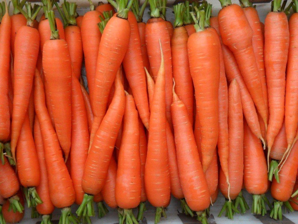 Спелая и красивая морковка