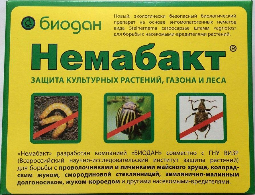 Как выглядит этикетка препарата Немабакт