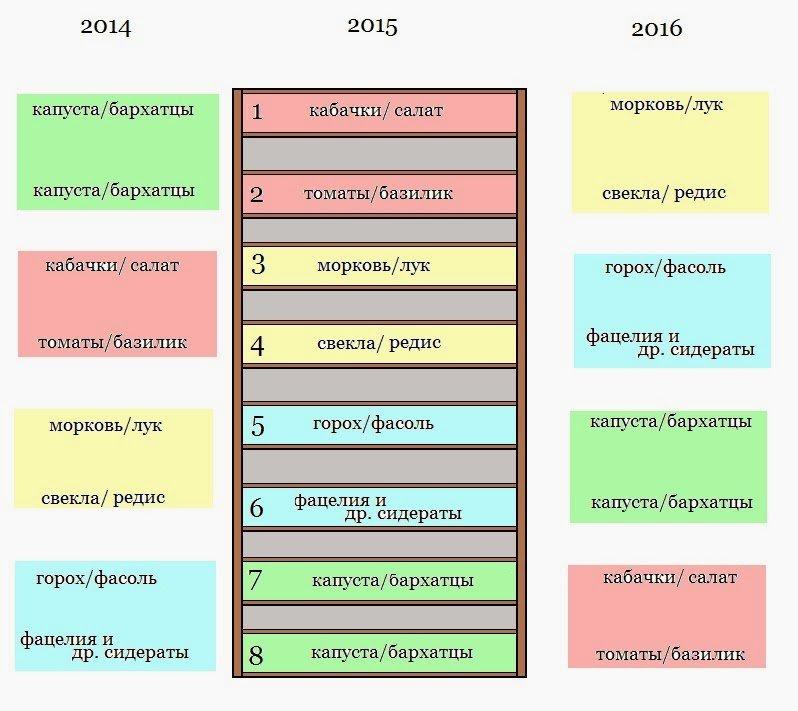 Севооборот в таблице за последние годы