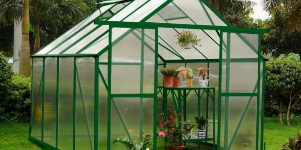Зеленый парник для выращивания цветов