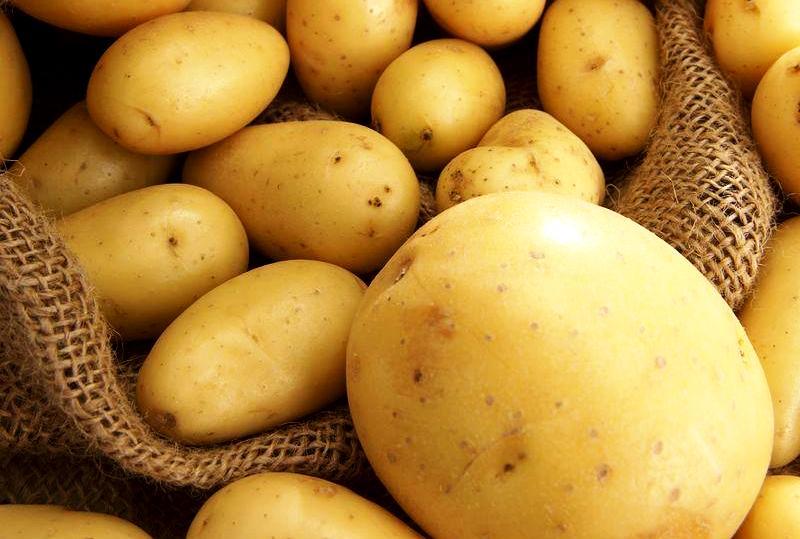 Крупные картофелины на снимке