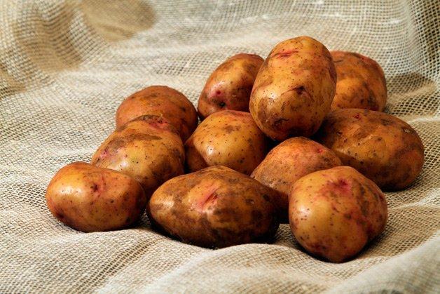 Плоды картофеля на мешковине