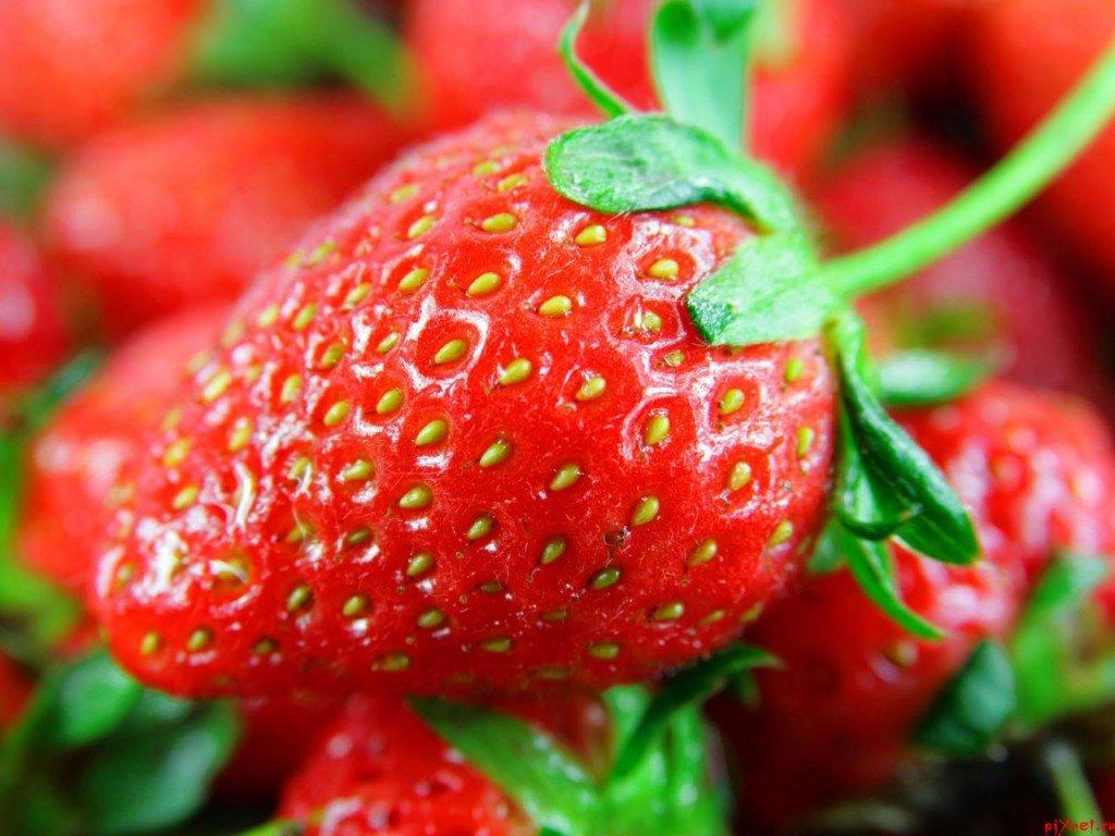 Как выглядит спелая и здоровая ягода клубники