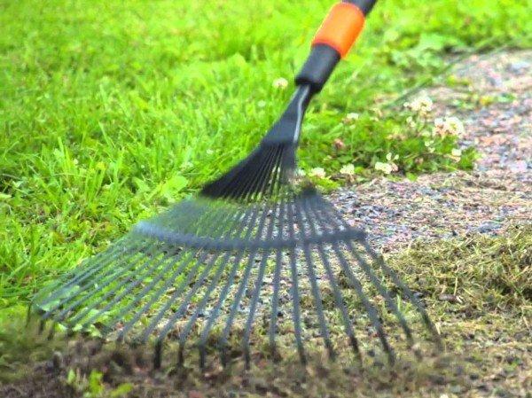Веерные грабли используют для чистки газонов