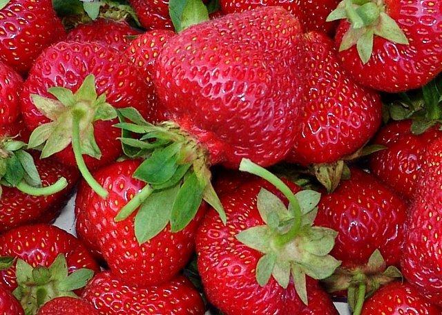 Огромные ягоды клубники фото