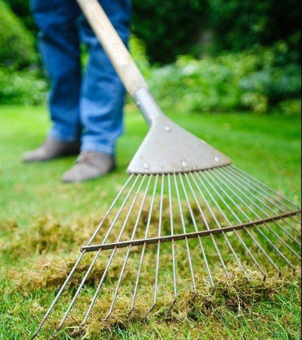 Данные грабли можно использовать для сбора сена и сорняков