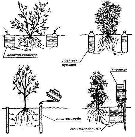 Способы организации капельного полива