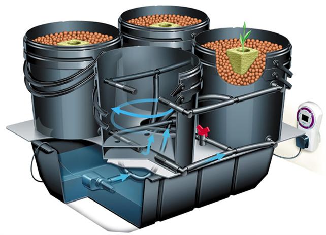 Технология использования гидропоники в бочках