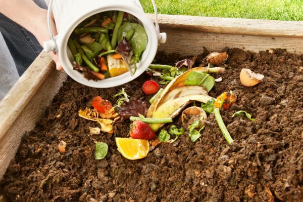 Добавление в компостную яму отходов овощей и фруктов
