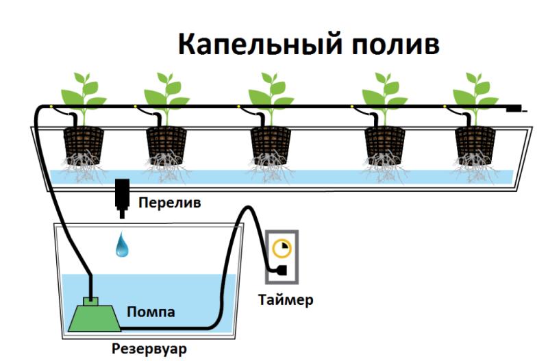 Капельный полив для урожая