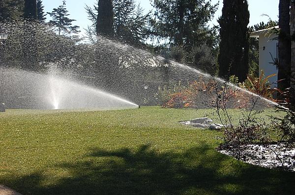 Орошение идеально подходит для полива кустарников и деревьев