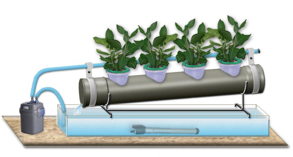 Настройка системы полива для клубники
