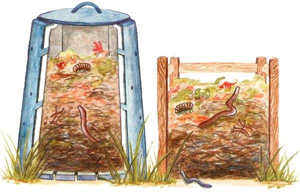Схема укладывания компоста в ящик