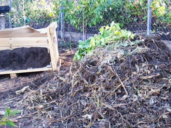 Тырсу можно использовать для компостных куч