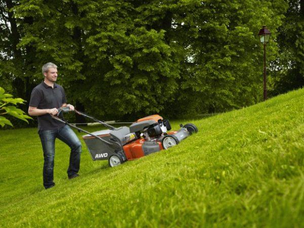 Для современных газонокосилок свойственна простота в управлении