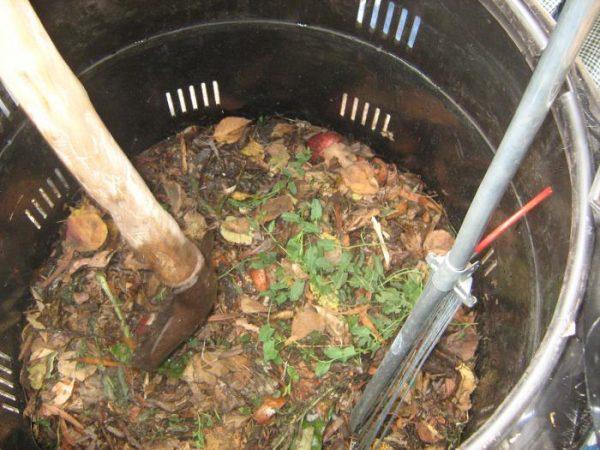 Картофельные очистки - отличное дополнение к любому удобрению