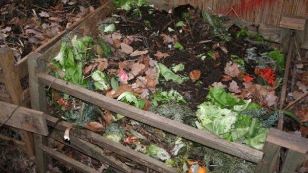 картофельные очистки можно использовать в компосте