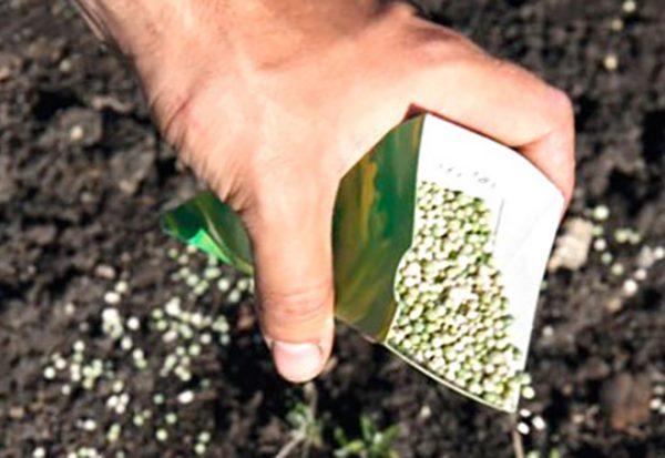 Нитроаммофоска - отличное средство для почвы