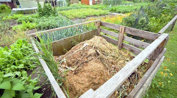 Опилки можно применять для компостных куч