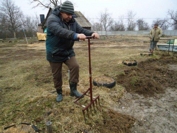 Выли-лопата - отличный помощник в копке земли